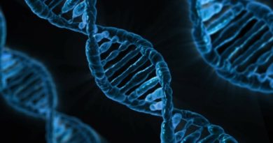 Autism: Current Gene Testing Techniques and the Future